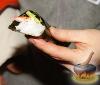 Фото к рецепту: Temaki  (Темаки)